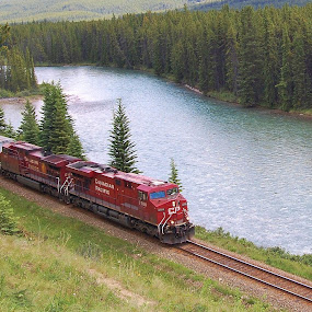 Bow River Freight by Jim Czech - Transportation Trains ( freight train, canada, train, banff, bow river, river,  )