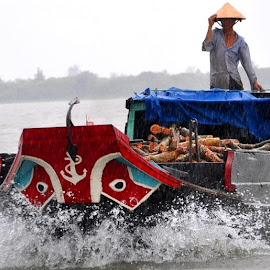 Discover Mekong delta, the water life of where is call  by Ha Trinh - Transportation Boats