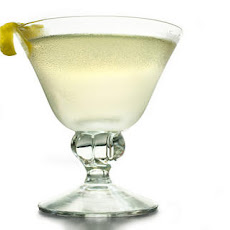 Perfect Gin Martini Recipe