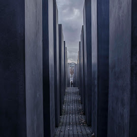 Memorial to the Murdered Jews of Europe by Roberta Paljar - Buildings & Architecture Statues & Monuments ( history, statue, europe, memorial, germany, monument, berlin, maze, jews,  )