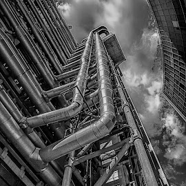 Lloyds of London by Sue Niven - Buildings & Architecture Architectural Detail ( uk, london, architecture, lloyds )