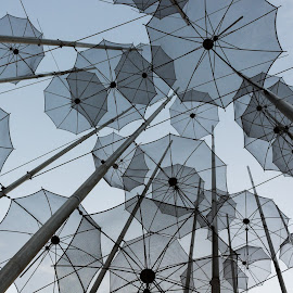 Umbrellas by Serban Stelica - City,  Street & Park  Skylines ( sky, umbrellas, lines )