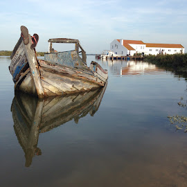 Reflexos by Pedro Pinto - Transportation Boats