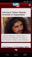 Screenshot of Tolo News