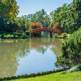 by Matt Meyers - City,  Street & Park  City Parks ( st louis, japanese gardens, lake, bridge, garden, missouri botanical garden )