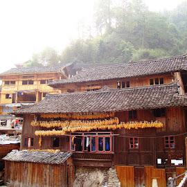 Kaili, historic village by Ilse Gibson - Buildings & Architecture Homes ( kaili, historic site, guizhou, ancient village, china,  )