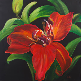 Lily by Jordanka Trifonova - Painting All Painting