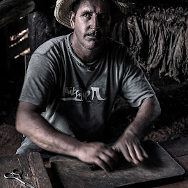 Rolling cigars by Adrian Baias - People Portraits of Men ( sony, countryside, cigar, a77, farmer, alpha, chiaroscuro, vinales, cuba )