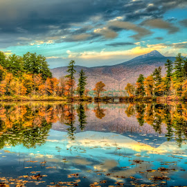 Mt Chocorua Reflection  by Joe Martin - Landscapes Mountains & Hills ( reflection, mt chocorua, landscape, fine art print, new hampshire )