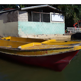 Fishing Boat on the Black River, Jamaica by Kim BraineOtt - Transportation Boats ( water, jamaica, boats, fishing, transportation, river )