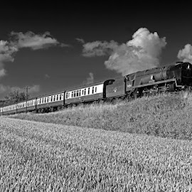 West Somerset Railway by Claes Wåhlin - Transportation Trains ( steam locomotive, england, black & white, train, west somerset railway )