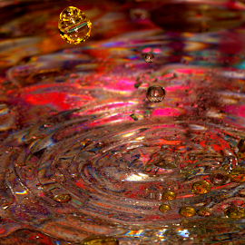 Golden Orb by Janet Lyle - Abstract Water Drops & Splashes ( water, splash, colors, droplets )