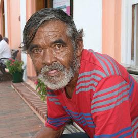 Bermuda man. by Peter DiMarco - People Portraits of Men ( local, bermuda, portrait, man, eyes )