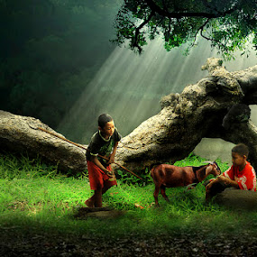 Pengembala by Bli Gede Bagoes IGPWT - Babies & Children Children Candids ( grass, goat, children, forest )