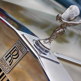 Silver Lady by Darrell Evans - Transportation Automobiles ( icon, iconic, emblem, grill, status, bonnet, rolls royce, hood, silver lady,  )