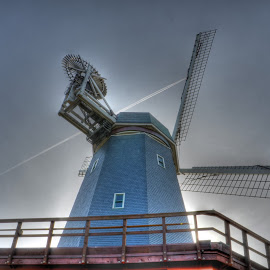 Golden Gate Park Windmill by John Herold - City,  Street & Park  City Parks ( park, san francisco, windmill, golden, gate )