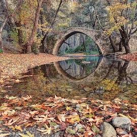 Kelefos Bridge by John Kotsovos - Buildings & Architecture Bridges & Suspended Structures ( reflection, autumn, trees, forest, bridge, leaves, cyprus, river, venetian )