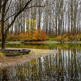 Riverside by Laci Erdős - Landscapes Waterscapes ( autumn, fall, boat, river, colours )