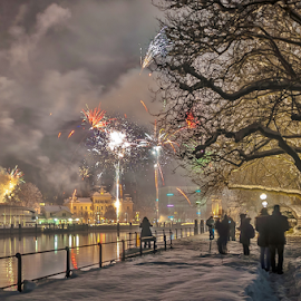 Happy new year! by Jesus Giraldo - City,  Street & Park  City Parks ( winter, tree, new year, harbour, snow, buildings, fireworks, fun, people, city, , city at night, street at night, park at night, nightlife, night life, nighttime in the city )