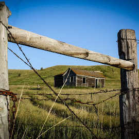 Gone but not Forgotten by Laura Gardner - Novices Only Landscapes ( fence, old, farmstead, landscapes & wildlife, barbwire, nd, settler, prairie, rustic, homestead, abandoned )