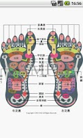 Screenshot of Reflexology foot chart