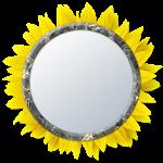 Mirror 4 Selfie [Camera] 1.1.0 Apk