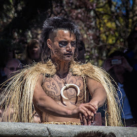 Maori warrior by Vibeke Friis - People Portraits of Men ( traditional costume, haka, maori, man,  )
