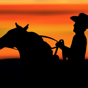 Sunset Cowboy by Hylas Kessler - Uncategorized All Uncategorized (  )