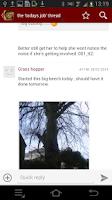 Screenshot of Arbtalk discussion forum