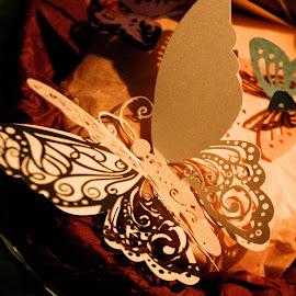 Beautiful Butterflies by Helen Roberts - Wedding Details (  )