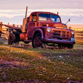 Left Behind by Kelly Rogerson - Transportation Automobiles ( garr ranch, winter, kelly rogerson photography, utah, sunset, kelly rogerson, antelope island, utah landscape, evening, old truck, antelope island state park, golden hour )