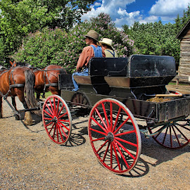 by Darlene Stewart - Transportation Other