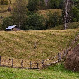 Silent by Marius Peptan - Landscapes Prairies, Meadows & Fields