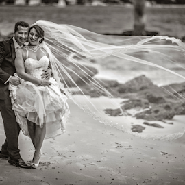 by Lindsay James - Wedding Bride & Groom ( bride-and-groom, happy, wedding, beach )
