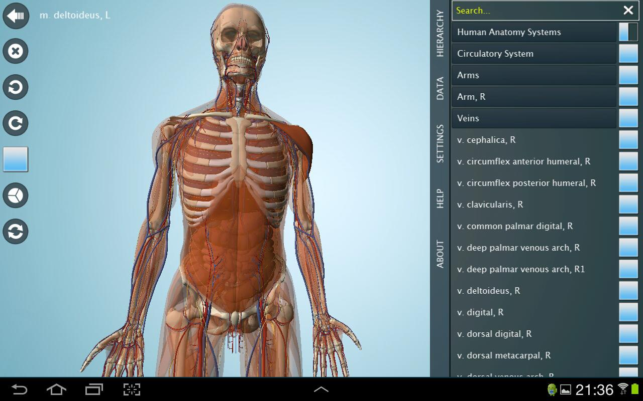 Anatomy 3D Pro - Anatronica Screenshot 4