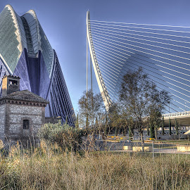 New and old by Jorge Igual - Buildings & Architecture Other Exteriors ( building, grass, blue, shadow, bridge, valencia )
