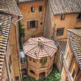 Siena by Cristian Peša - Buildings & Architecture Architectural Detail