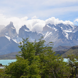 patagonia by Janet Rose - Novices Only Landscapes