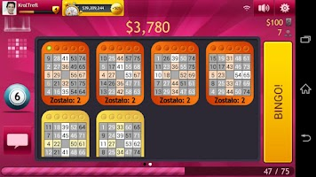 Screenshot of Bingo by GameDesire