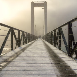 love in the mist... by Massimo Vico - Buildings & Architecture Bridges & Suspended Structures ( love, valentine's day, challenge, nature, love is in the air, postcard, landscape, photo )