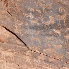 clear creek petroglyphs by Debbie Theobald - Nature Up Close Rock & Stone ( natural light, nature, arizona, petroglyphs., rocks,  )