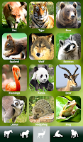Screenshot of ZOOLA Free animal sounds game