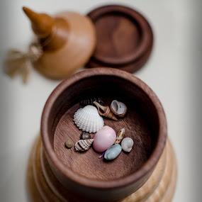 The Treasure Within by RomanDA Photography - Artistic Objects Still Life ( shells, wood, container, box,  )