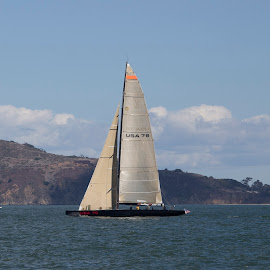 America's Cup Winner Of The Past by Janet Marsh - Transportation Boats ( americas cup, san francisco,  )