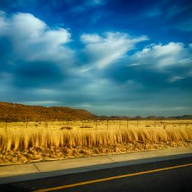 Roadside by Adriaan Oosthuizen - Instagram & Mobile iPhone ( rampix photography, rampix, photography )