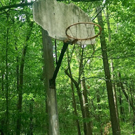 Now hidden basketball courts. Where do I go every day? by Nicholas Willis - Sports & Fitness Basketball