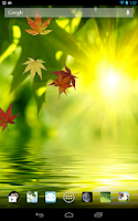 Screenshot of Fallen Leaves Ripple LWP