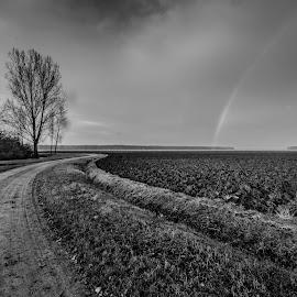 after rain by Eseker RI - Landscapes Prairies, Meadows & Fields ( black and white, b&w, landscape,  )