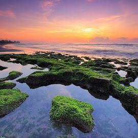 The Green Manyar by Sunan Tara - Landscapes Sunsets & Sunrises ( bali, manyar, waterscape, green, rock, beach, seascape, sunrise, landscape, sun )