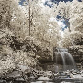 Smoky Hollow in IR by Stan Klasz - Landscapes Forests